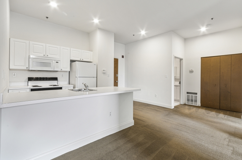 1300 Chestnut Street open concept kitchen, living, and dinning space