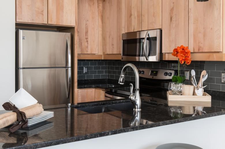 Plant 1 modern kitchen