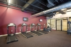 Cardio machines at the fitness center