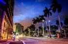 Atrium_Miami2